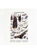 Kelzuki/Consignment Mini Print Consignment - Chiroptera