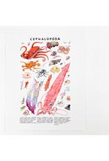 Kelzuki/Consignment Mini Print Consignment - Cephalopoda