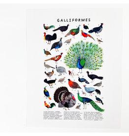 Kelzuki/Consignment Mini Print Consignment - Galliformes