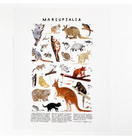 Kelzuki/Consignment Marsupials Print/Consignment