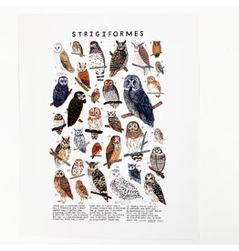 Kelzuki/Consignment Strigiformes prints/Consignment