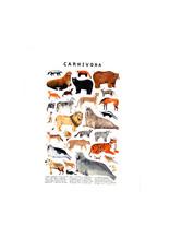 Kelzuki/Consignment Carnivora Print/ Consignment