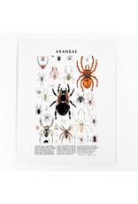 Kelzuki/Consignment Araneae Print/ Consignment