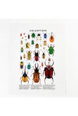 Kelzuki/Consignment Coleoptera Prints/ Consignment