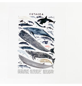 Kelzuki/Consignment Cetacea Print/Consignment