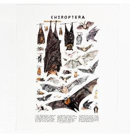 Kelzuki/Consignment Chiroptera Print Consignment