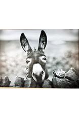 Creative Co-Op Donkey Wall Art