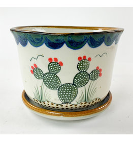 Tesoros Med Planter Nopal Mexico