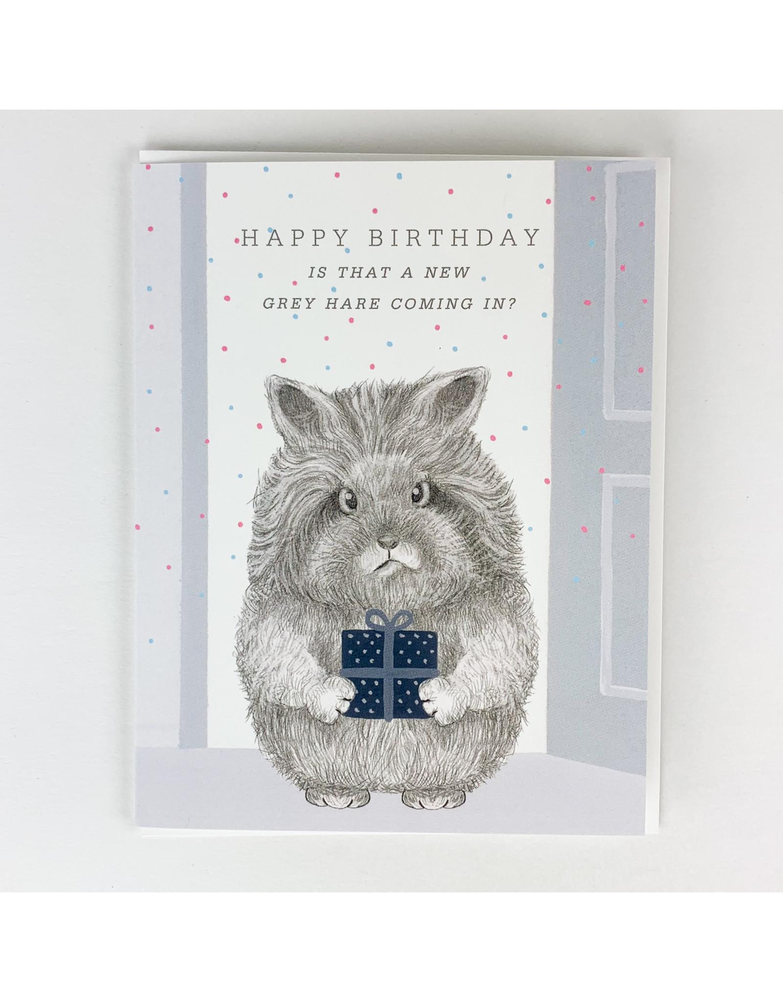 Dear Hancock New Grey Hare Coming In