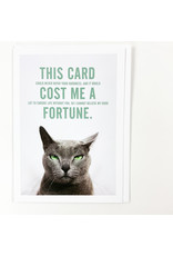 The Raccoon Society Pissed Off Cats Card Fortune