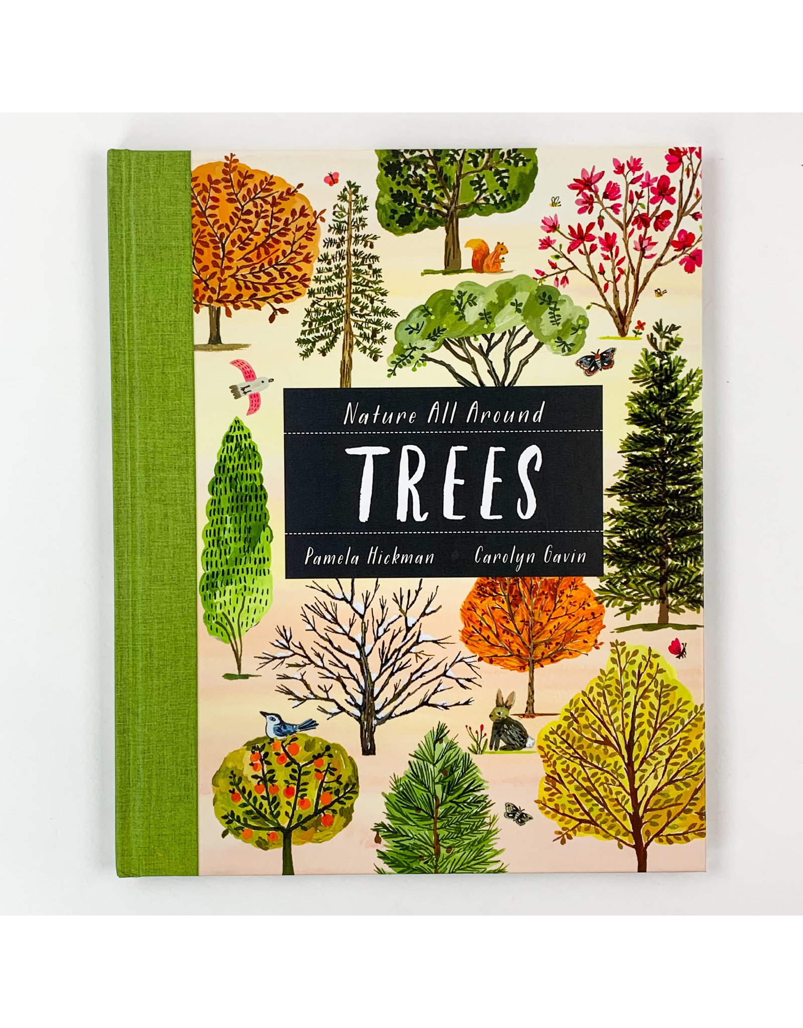 Hachette Nature All Around Trees