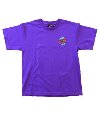 Santa Cruz Santa Cruz screaming hand regular youth tee purple with blue YXL