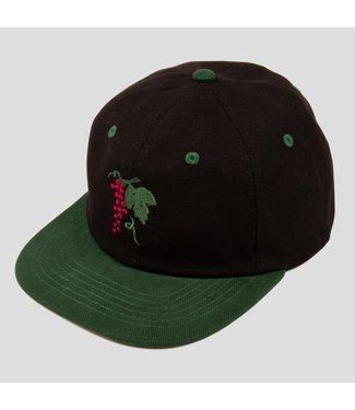 Passport Hat  Forest Green/Black LIFE OF LEISURE 6 PANEL CAP