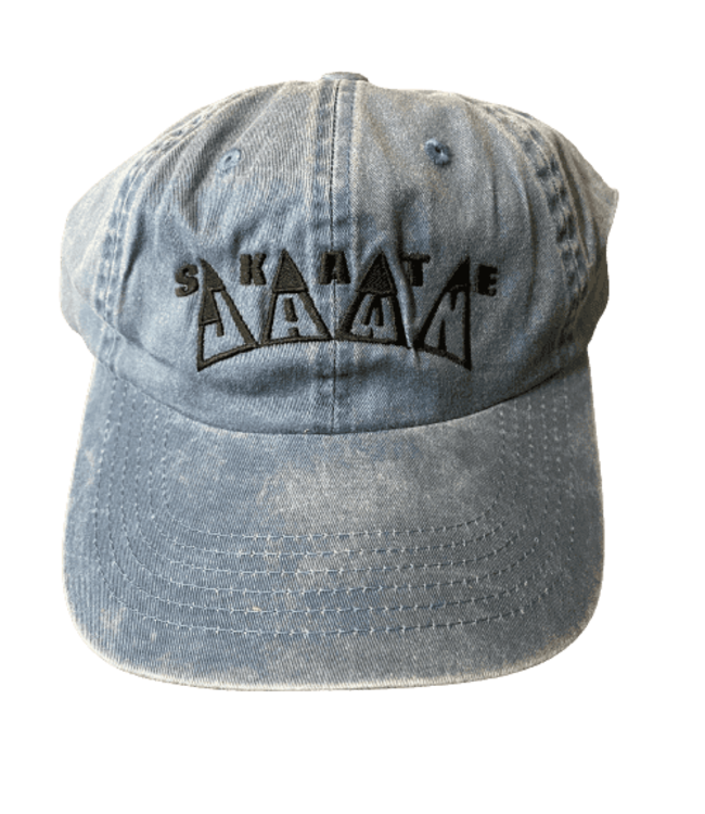 Skate Jawn King Embroidered Hat blue