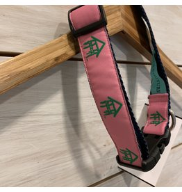 Ribbon Dog Collar