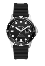 Fossil Collection FB-01 FS5660