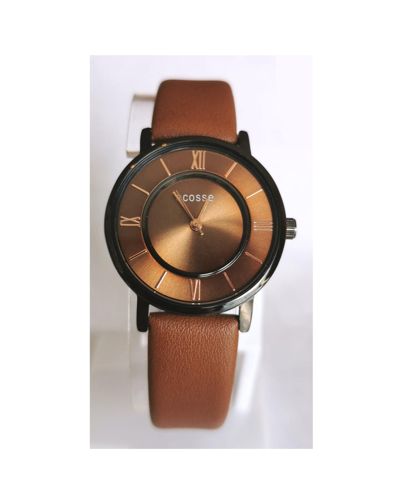 Écosse 2031 Brown