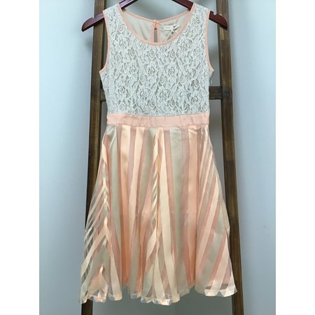 RYU Peach Printed Sheer Bottom Dress
