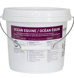 Ocean Equine 3kg