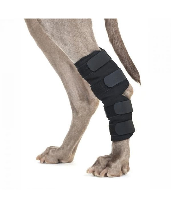 Attele de jarret pour chien BOT - M