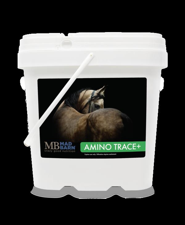 Amino Trace+ 5kg