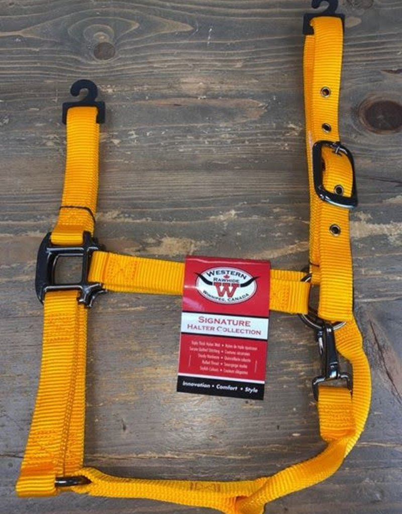 Licou WR nylon orange WB-Large
