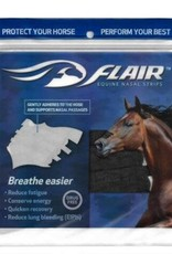 Western Bande nasales pour cheval