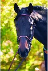 Henri De Rivel Bride HDR Fancy - Pony