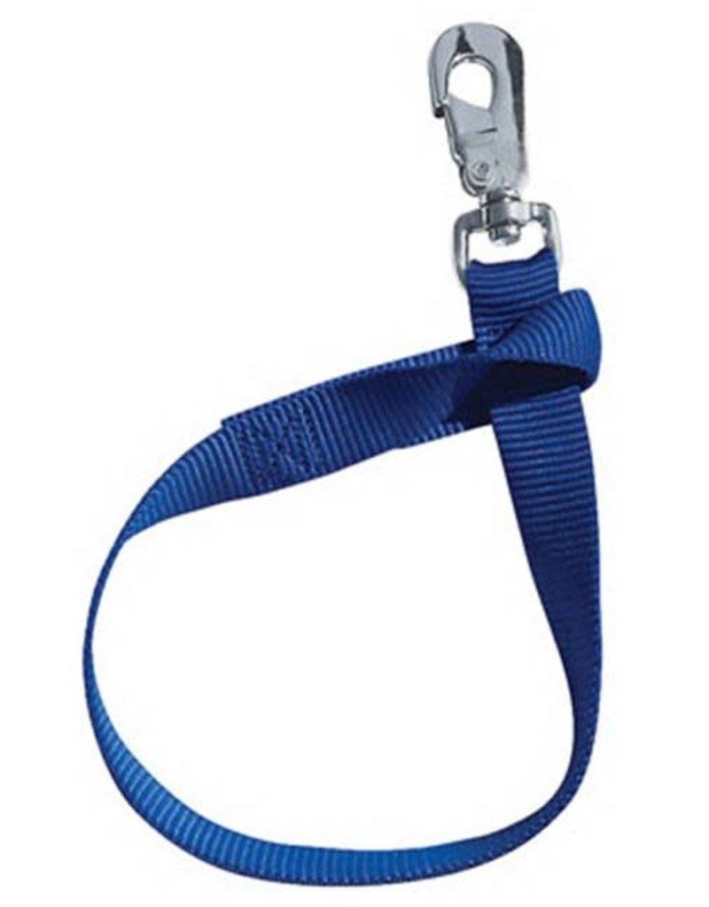 Courroie de chaudiere Bleu