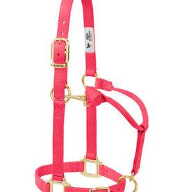 Weaver Licou Weaver Diva Pink Weanling Pony