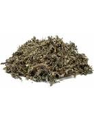 Estafiate Mugwort c/s Artemisia Vulagaris 1 lb