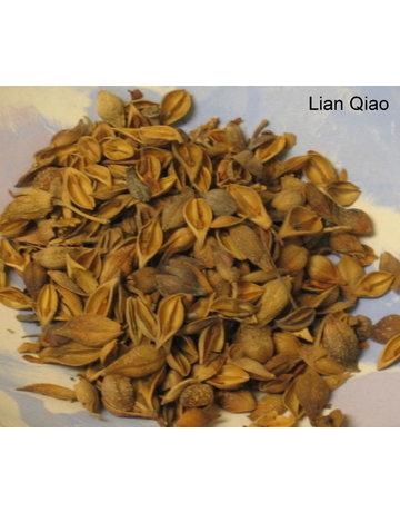 Lian Qiao Forsythia Fruit 1 lb