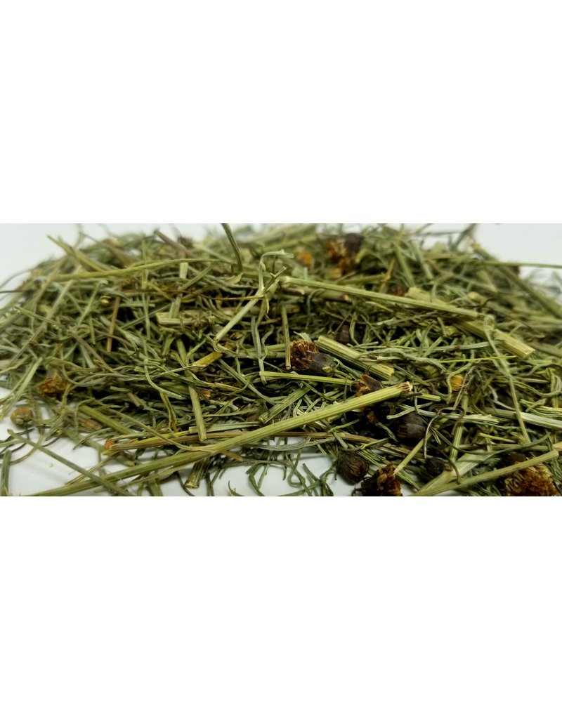 Indian Navajo Cota Thelesperma Greenthread loose tea 1/2 oz