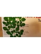 Thong Hong Moringa leaves 100 Tea bags