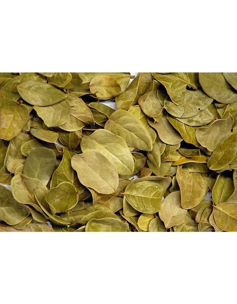 Boldo  leaves , stems 1oz