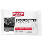 Hammer Nutrition Endurolytes Electrolyte Replacement 4 capsules