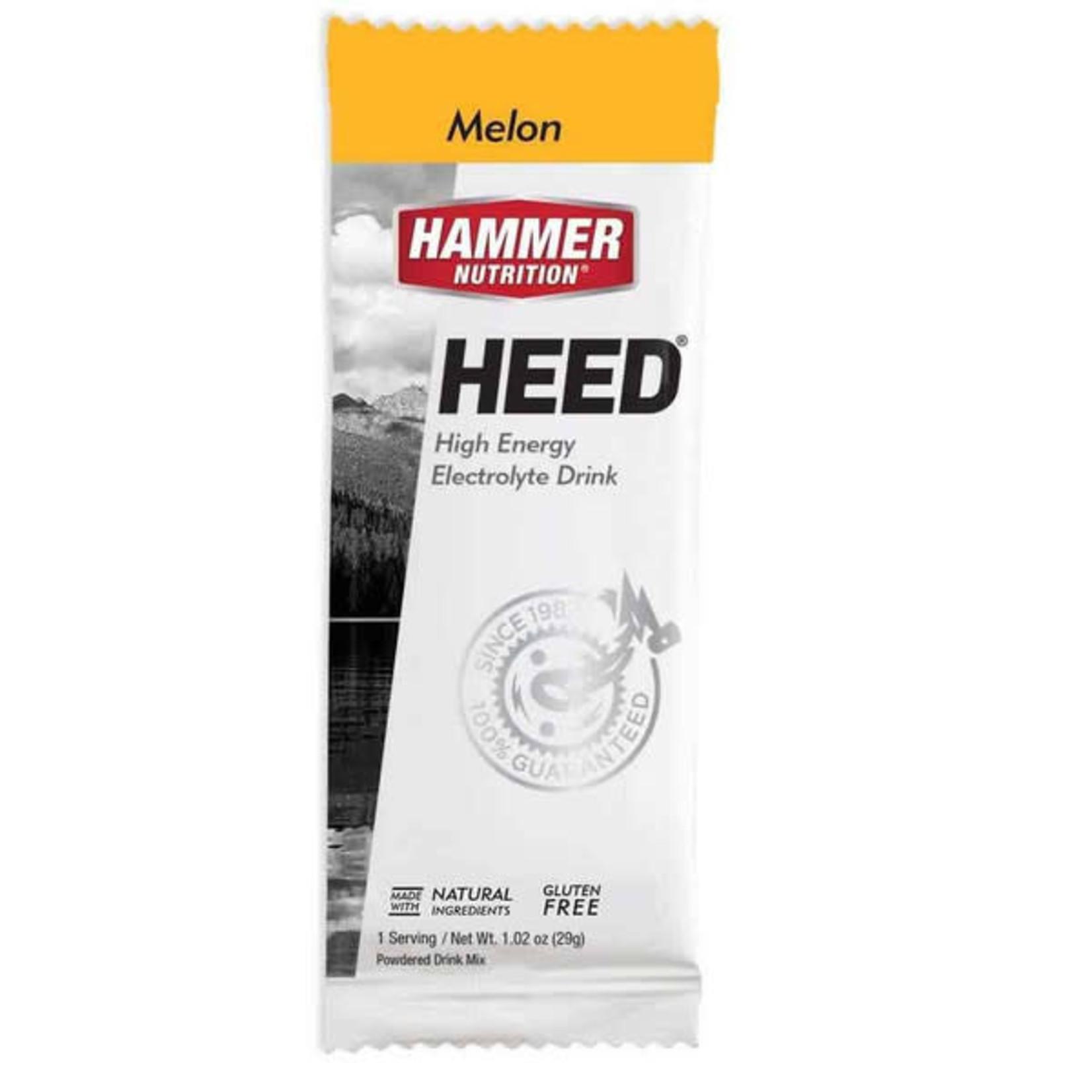 Hammer Nutrition Hammer HEED 1 Serving Packet