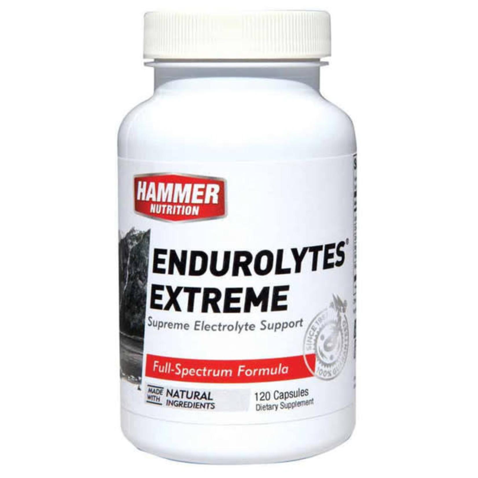 Hammer Nutrition Hammer Endurolytes Extreme 120 capsules