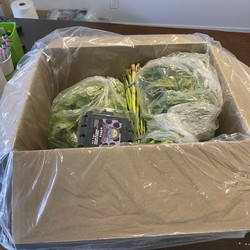 Keto Basket Of Fresh Vegetables