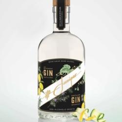Gin classique sans alcool 750 ml