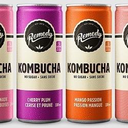 REMEDY Kombucha Canettes 4x330ml (6 saveurs)