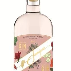 Gin floral sans alcool 750 ml