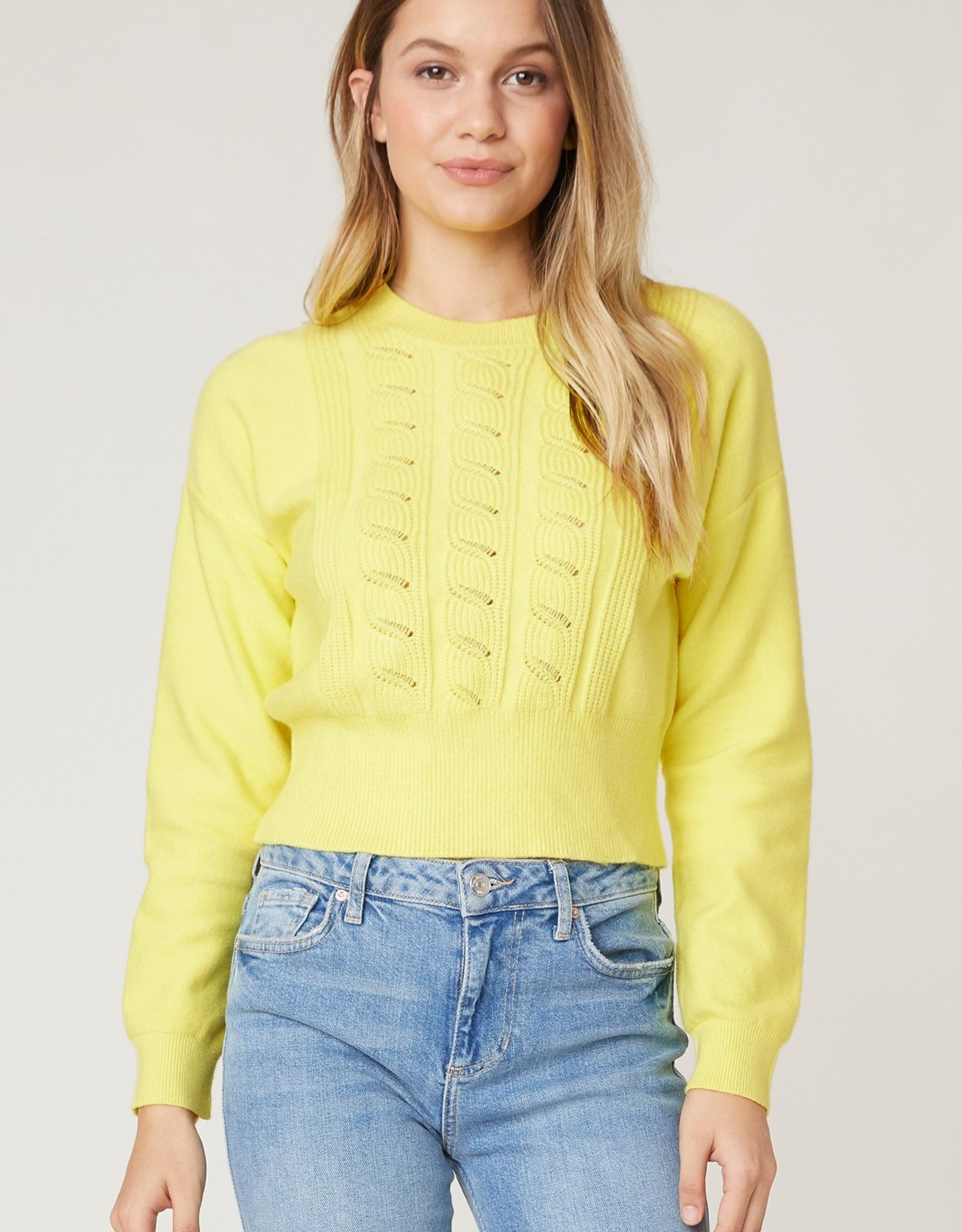 Jack by BB Dakota  Waist the Day Cable Sweater