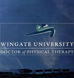 Color Shock Doctor of Physical Therapy decal