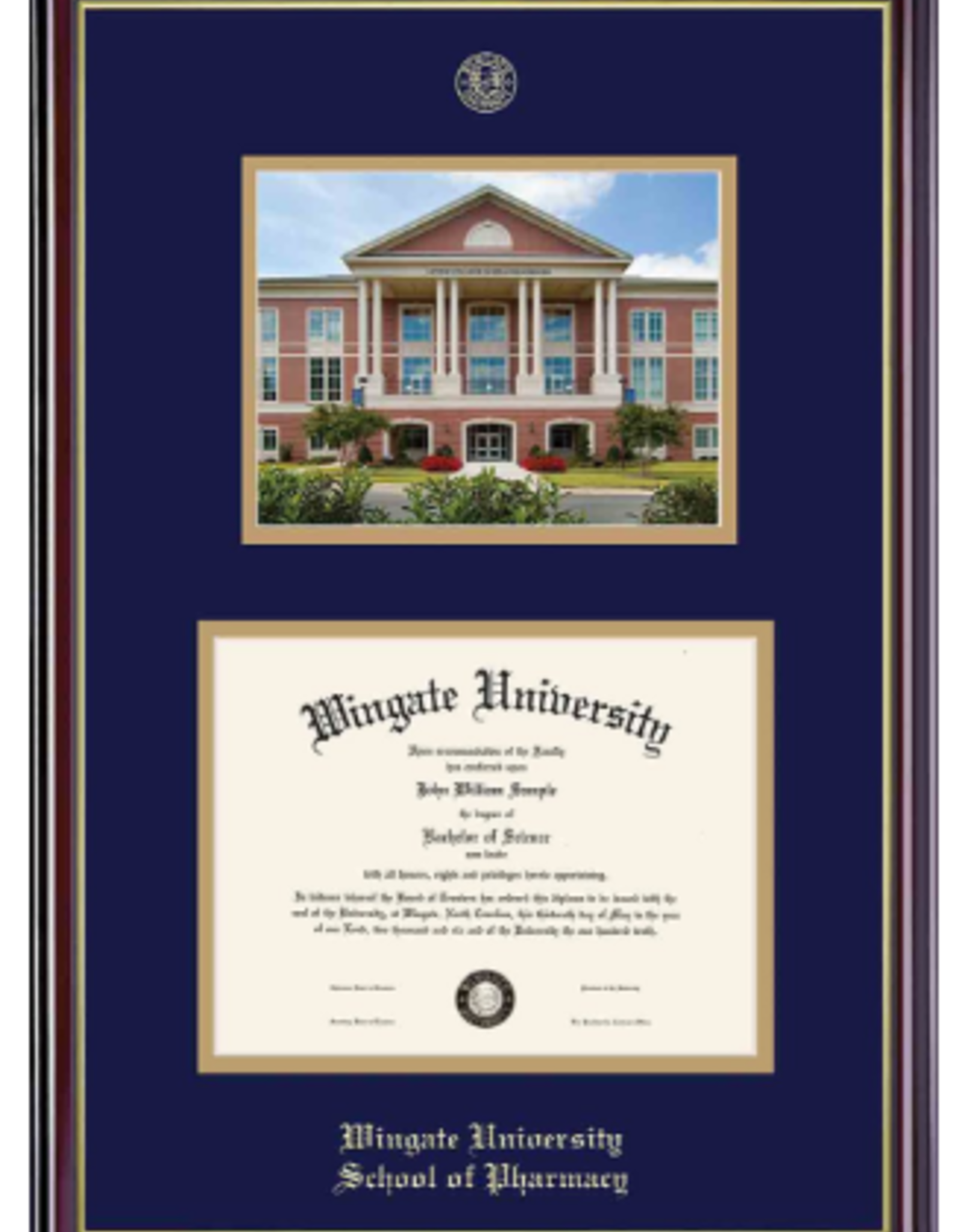 Pharmacy Windsor Diploma Frame Picture