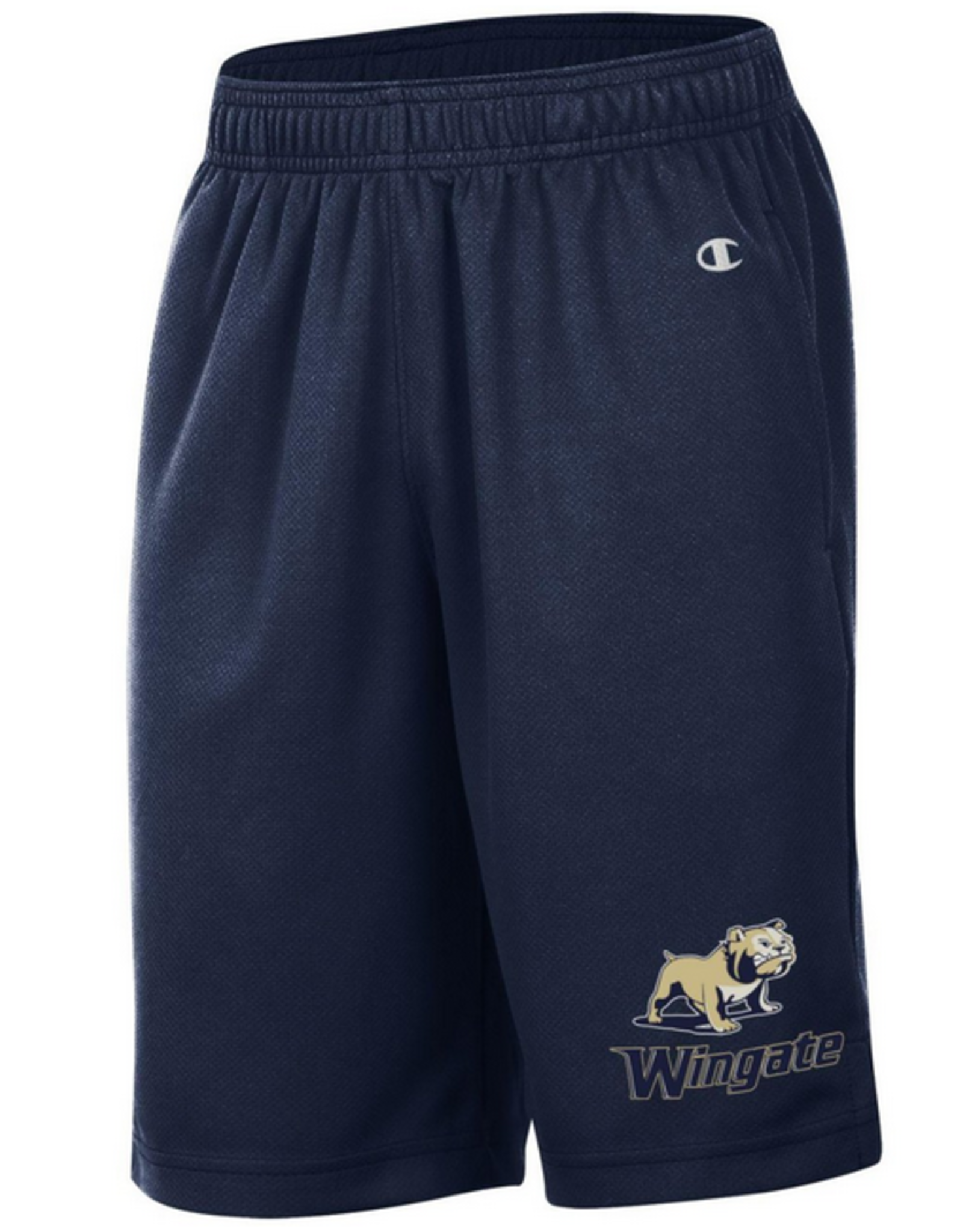 Champion Youth Navy Mesh Shorts