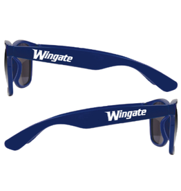 Navy Campus Shade Sunglasses