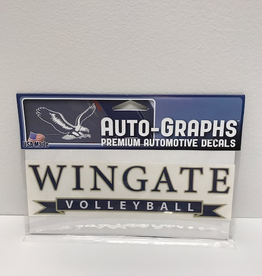 "Color Shock 7.5"" x 2.5"" Volleyball Banner Decal"