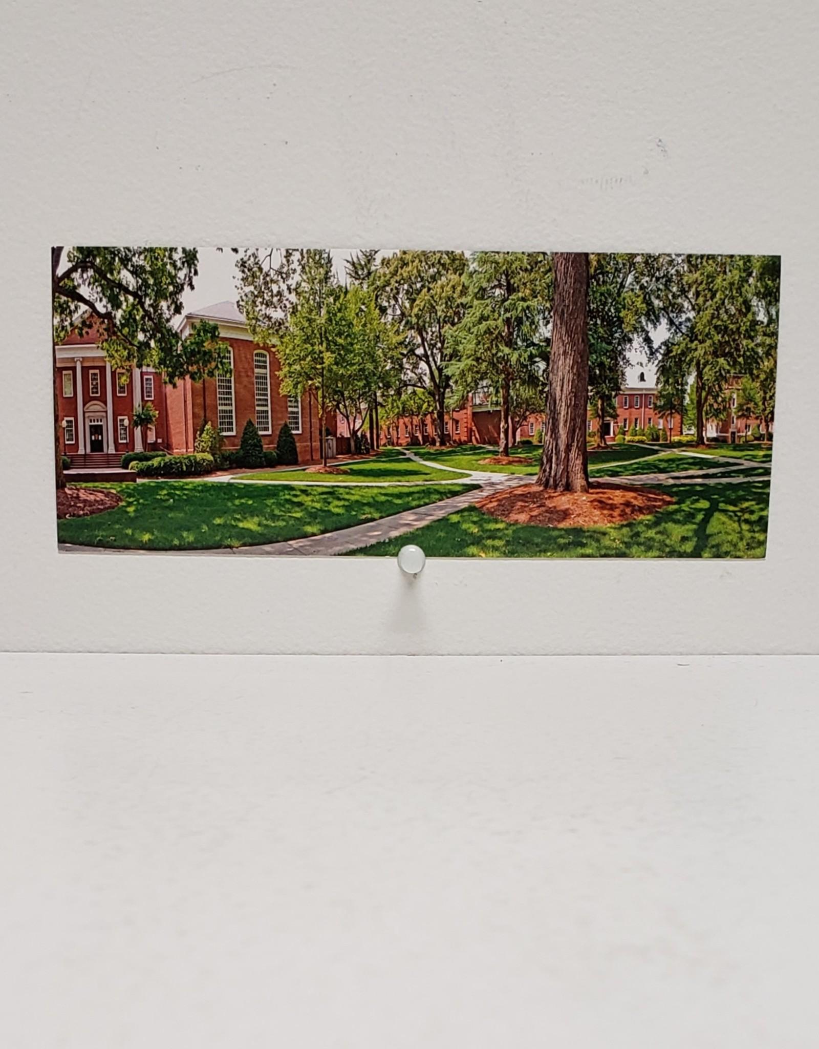 Library Panoramic Postcard