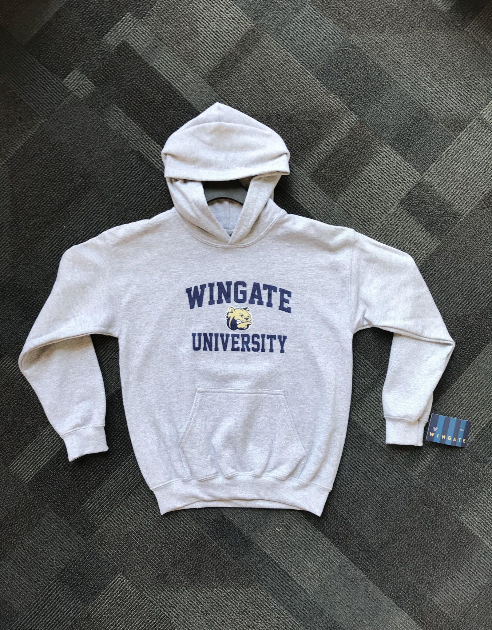 Youth Basic Grey Wingate Dog Head University Hoodie